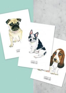 Postales Perritos