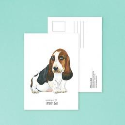 Postal BassetHound