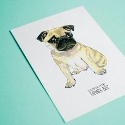 Postal Ilustrada Carlino
